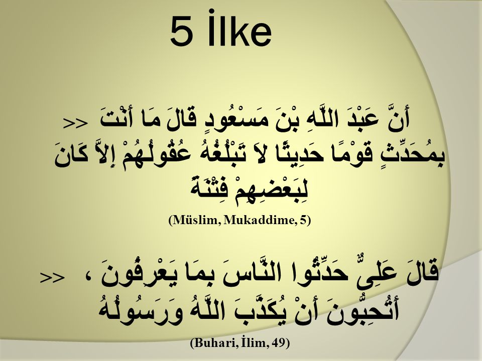 5 İlke
