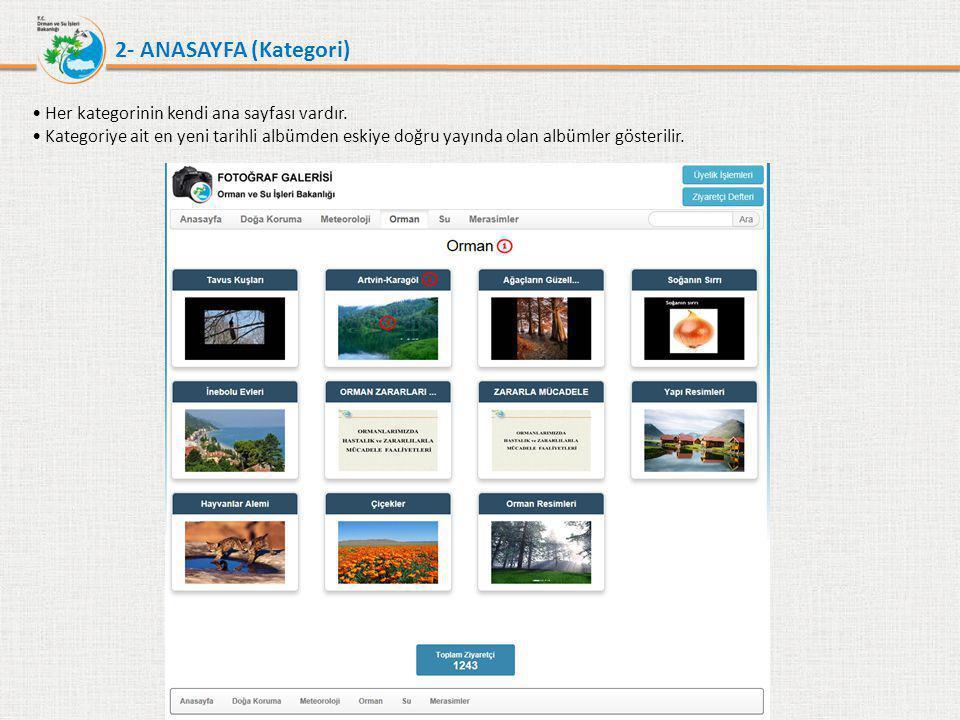 2- ANASAYFA (Kategori) Her kategorinin kendi ana sayfası vardır.