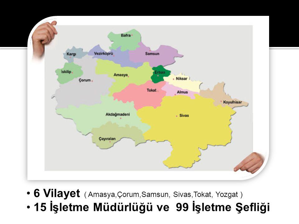 6 Vilayet ( Amasya,Çorum,Samsun, Sivas,Tokat, Yozgat )