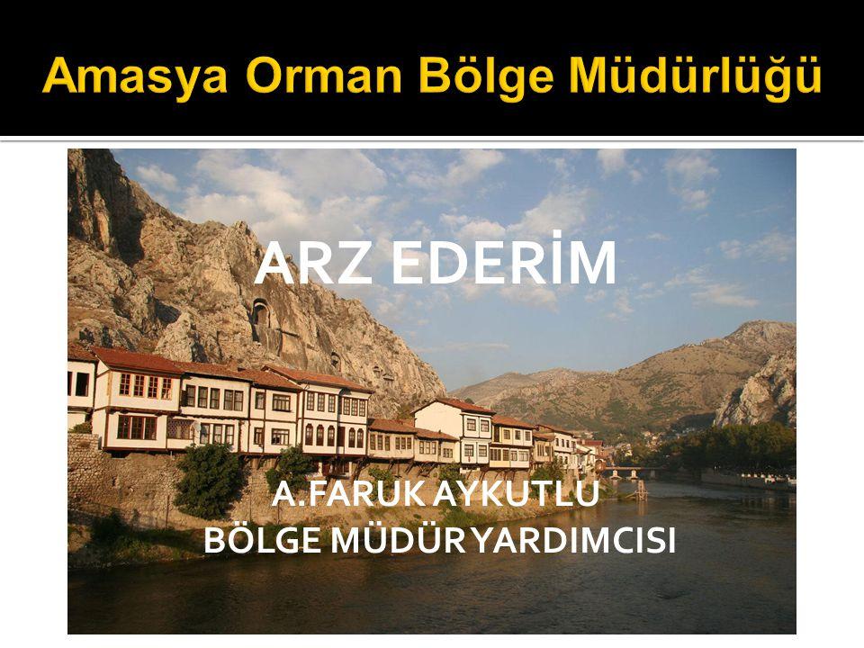 Amasya Orman Bölge Müdürlüğü
