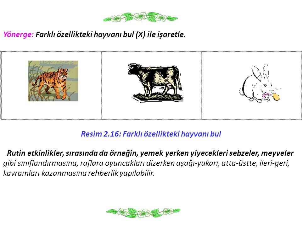 Resim 2.16: Farklı özellikteki hayvanı bul