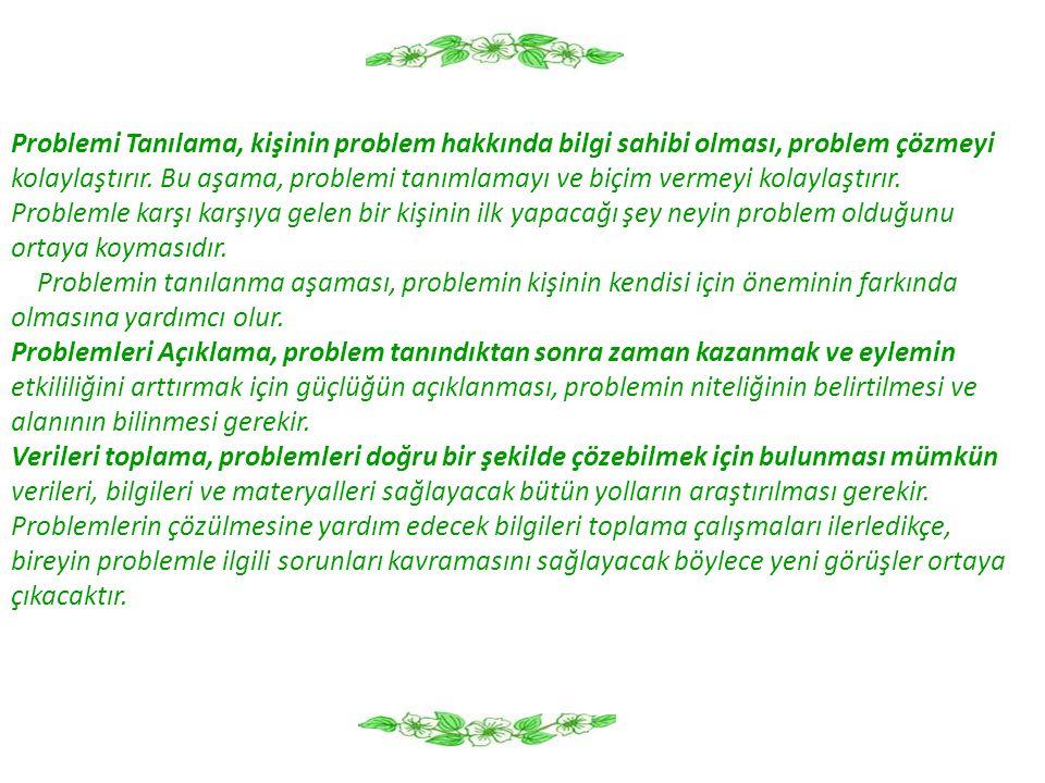 Problemi Tanılama, kişinin problem hakkında bilgi sahibi olması, problem çözmeyi
