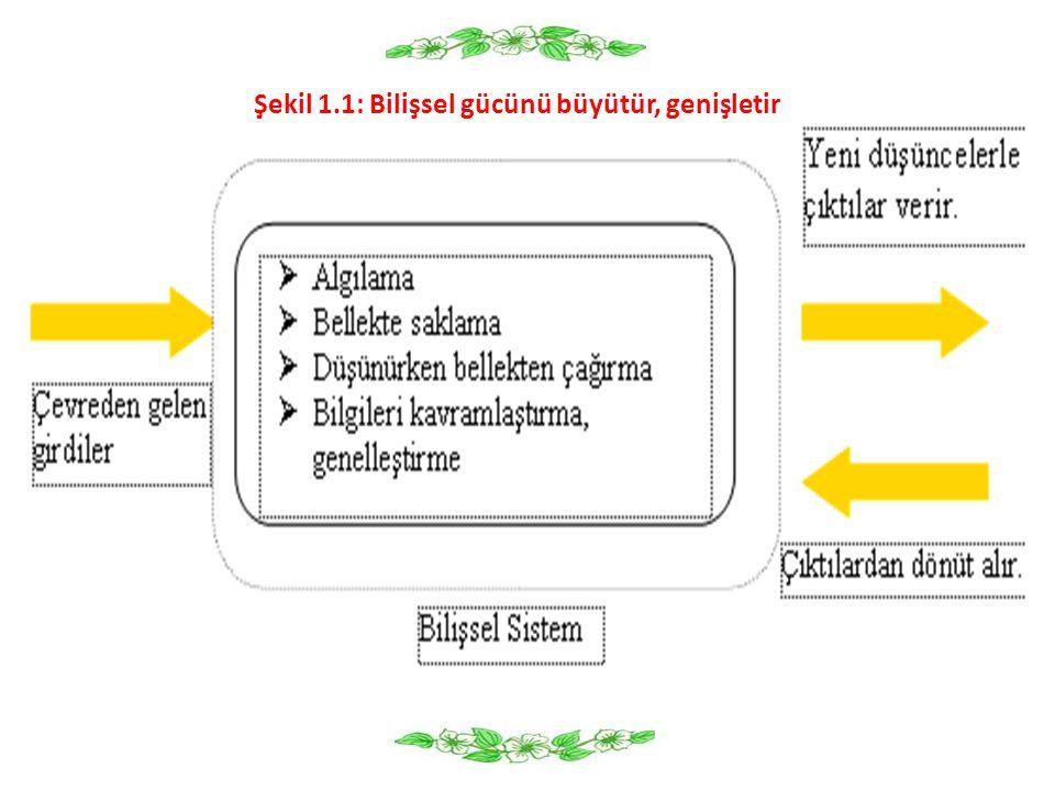 Şekil 1.1: Bilişsel gücünü büyütür, genişletir