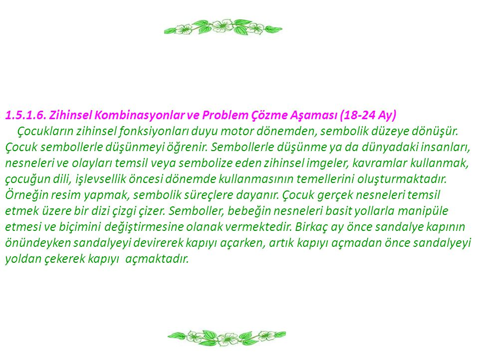 1.5.1.6. Zihinsel Kombinasyonlar ve Problem Çözme Aşaması (18-24 Ay)