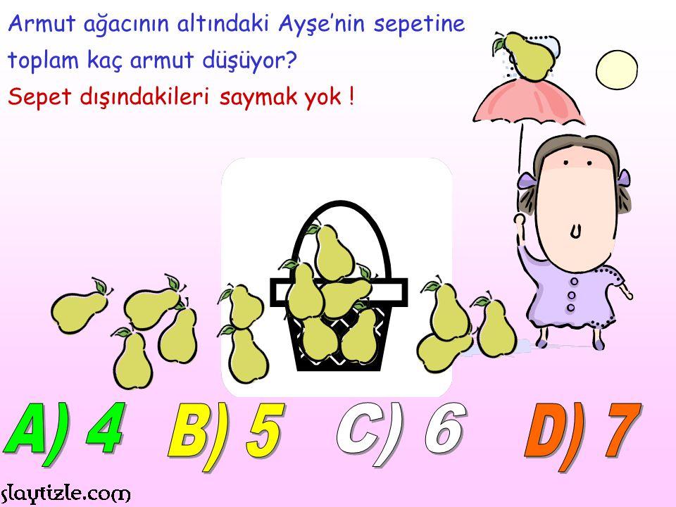 A) 4 B) 5 C) 6 D) 7 Armut ağacının altındaki Ayşe'nin sepetine