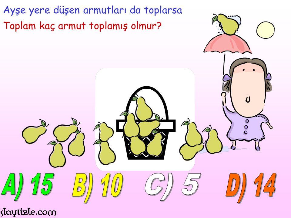 A) 15 B) 10 C) 5 D) 14 Ayşe yere düşen armutları da toplarsa