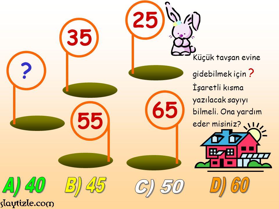 25 35. Küçük tavşan evine gidebilmek için İşaretli kısma yazılacak sayıyı bilmeli. Ona yardım eder misiniz