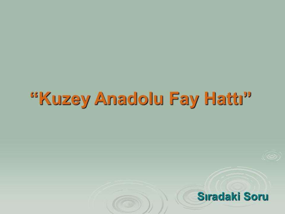 Kuzey Anadolu Fay Hattı
