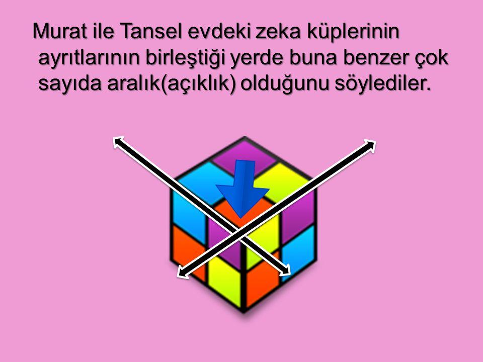 Murat ile Tansel evdeki zeka küplerinin ayrıtlarının birleştiği yerde buna benzer çok sayıda aralık(açıklık) olduğunu söylediler.