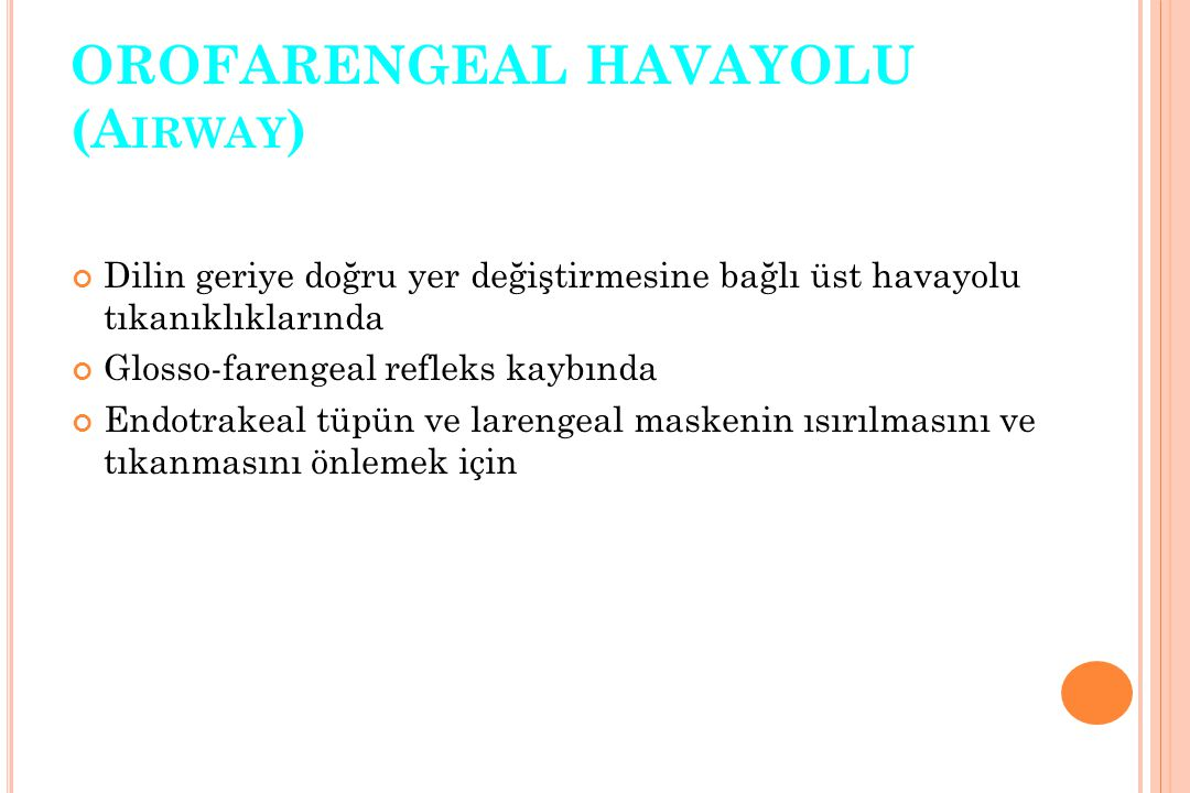 OROFARENGEAL HAVAYOLU (Airway)