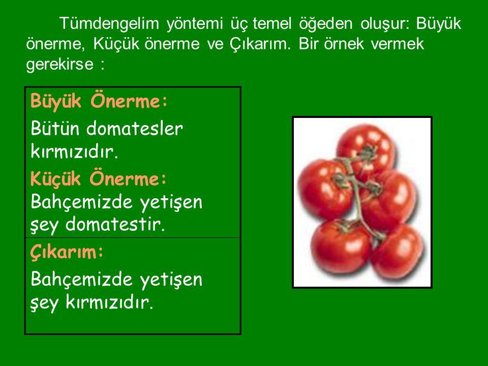 Bütün domatesler kırmızıdır.