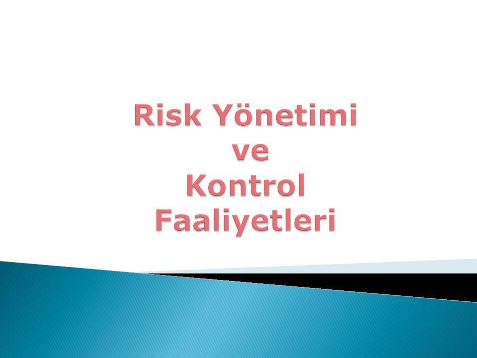 Risk Yönetimi ve Kontrol Faaliyetleri