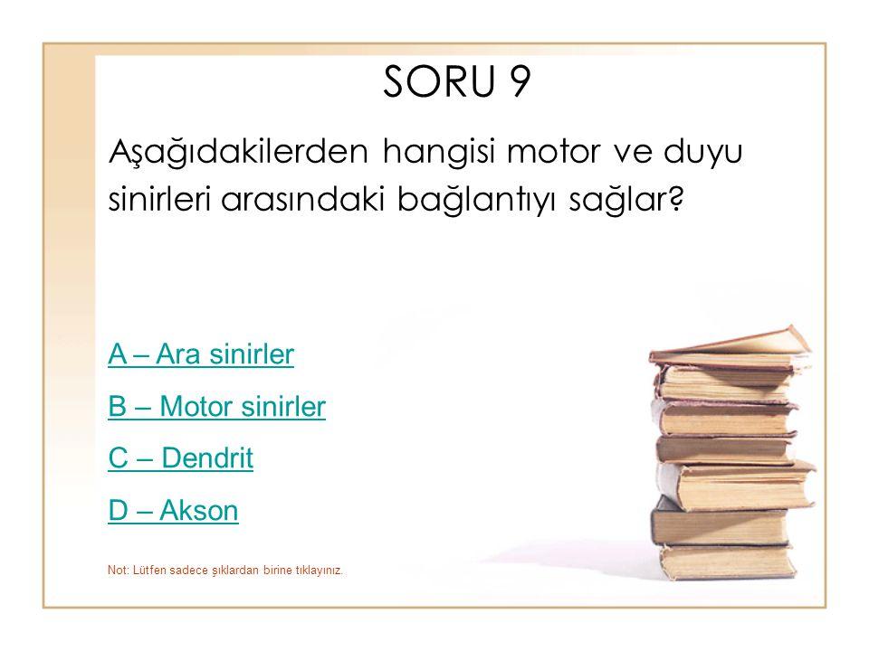 SORU 9 Aşağıdakilerden hangisi motor ve duyu