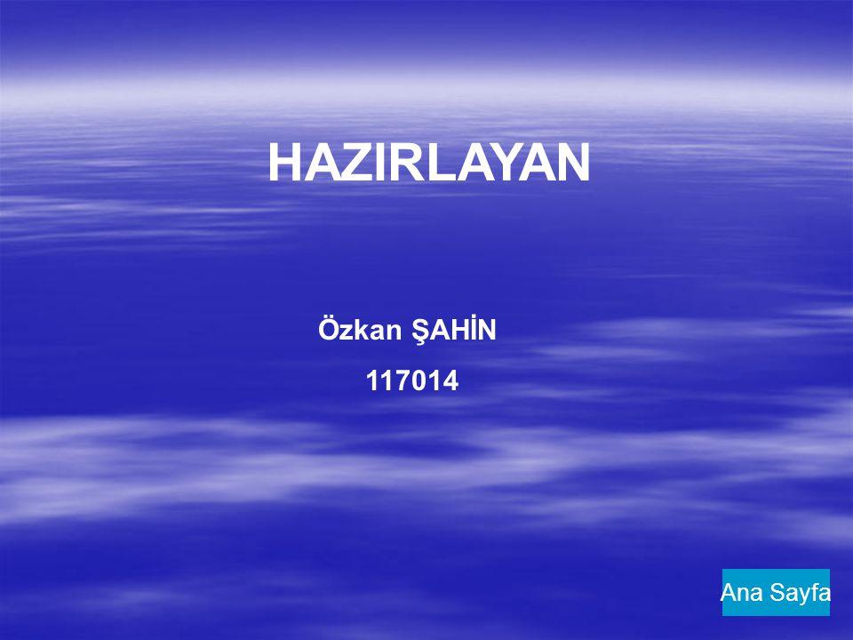 HAZIRLAYAN Özkan ŞAHİN 117014 Ana Sayfa