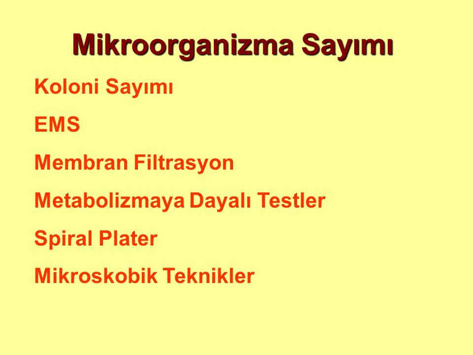 Mikroorganizma Sayımı