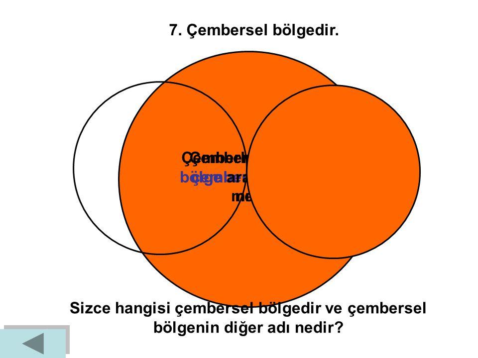 Çemberle çembersel bölge arasındaki fark nedir