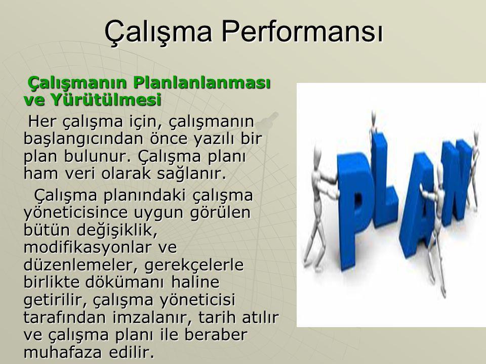 Çalışma Performansı Çalışmanın Planlanlanması ve Yürütülmesi