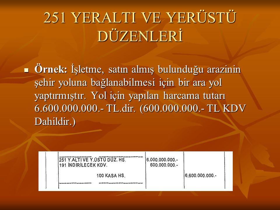 251 YERALTI VE YERÜSTÜ DÜZENLERİ