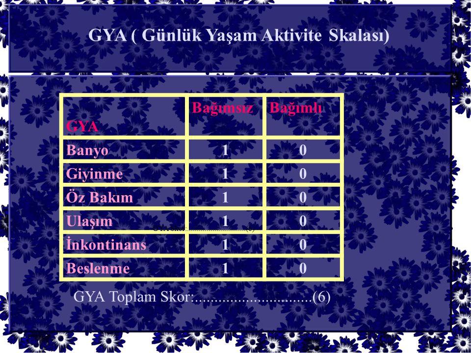 GYA ( Günlük Yaşam Aktivite Skalası)