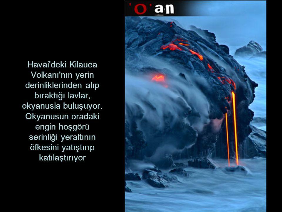 Havai deki Kilauea Volkanı nın yerin derinliklerinden alıp bıraktığı lavlar, okyanusla buluşuyor.