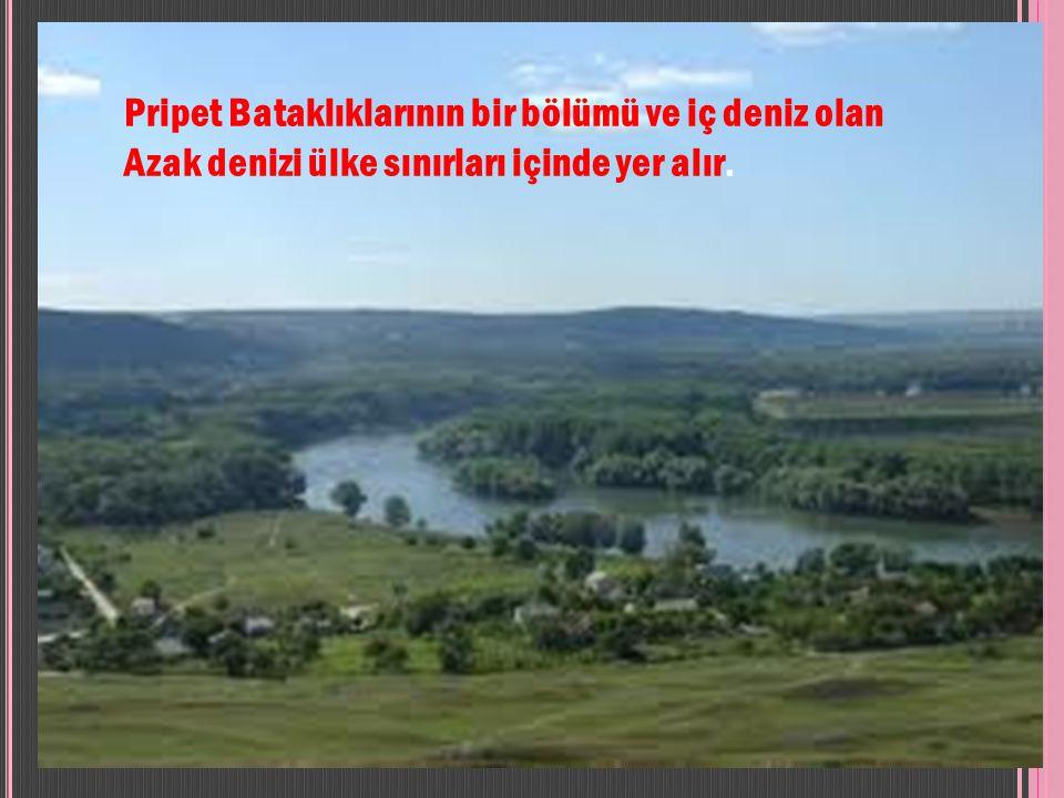 Pripet Bataklıklarının bir bölümü ve iç deniz olan Azak denizi ülke sınırları içinde yer alır.