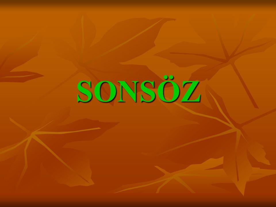 SONSÖZ