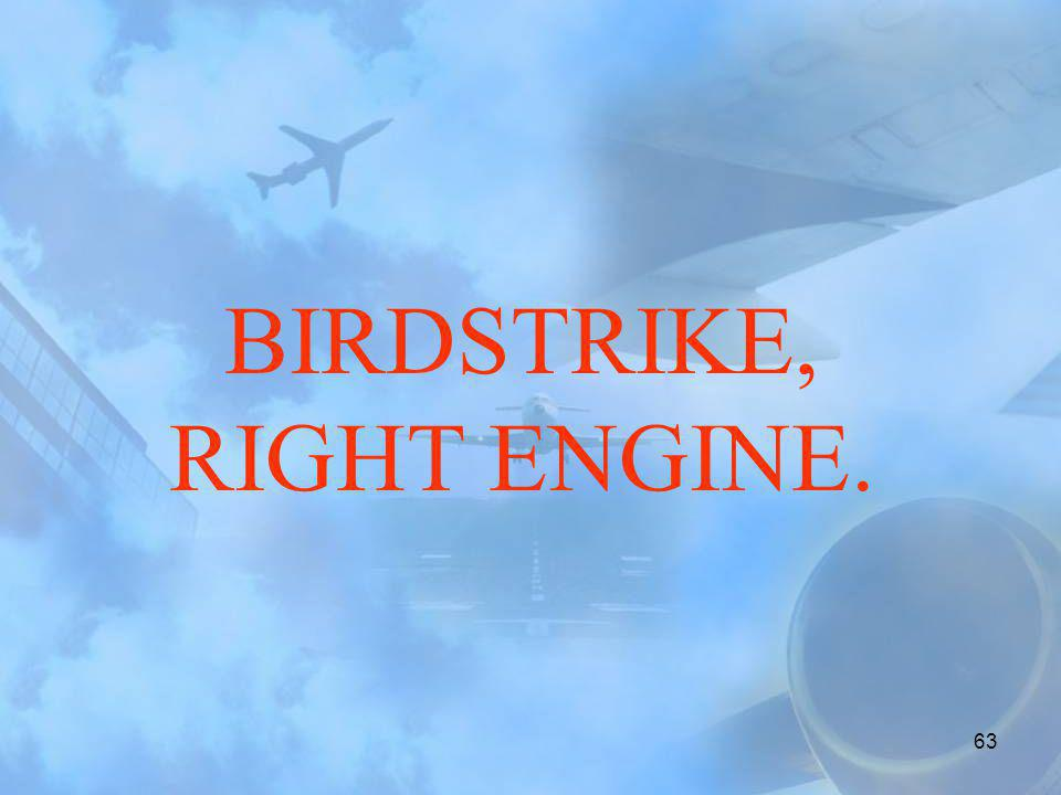 BIRDSTRIKE, RIGHT ENGINE.