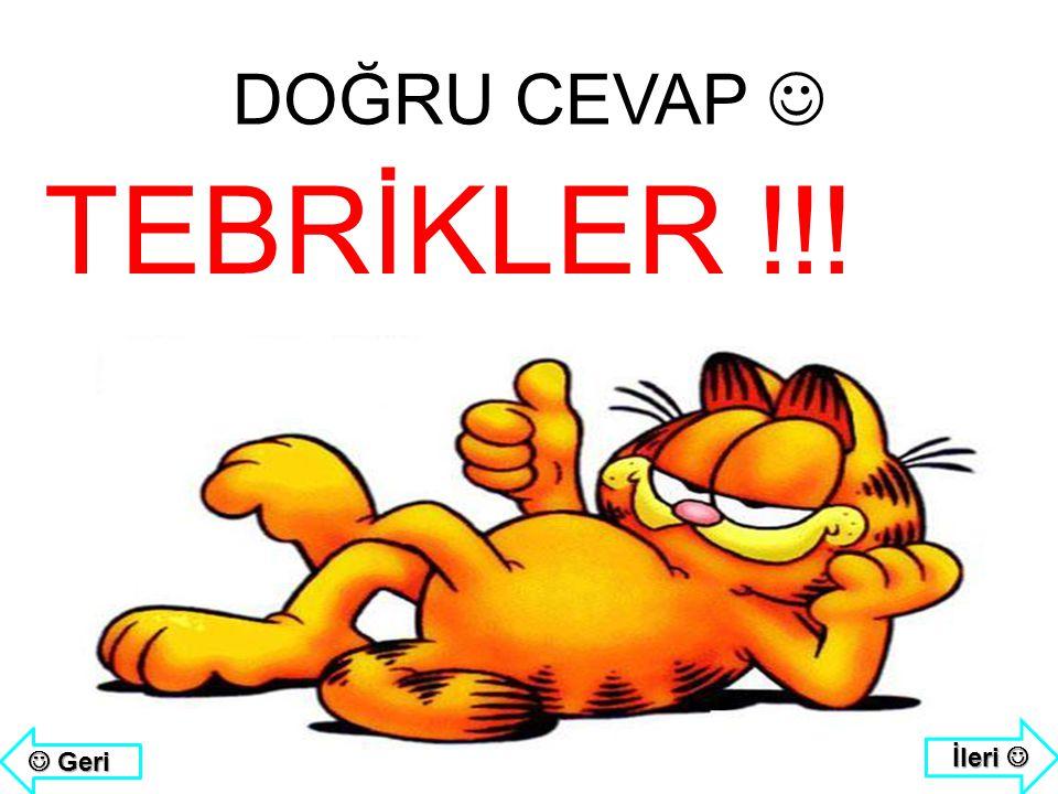 DOĞRU CEVAP  TEBRİKLER !!! İleri   Geri