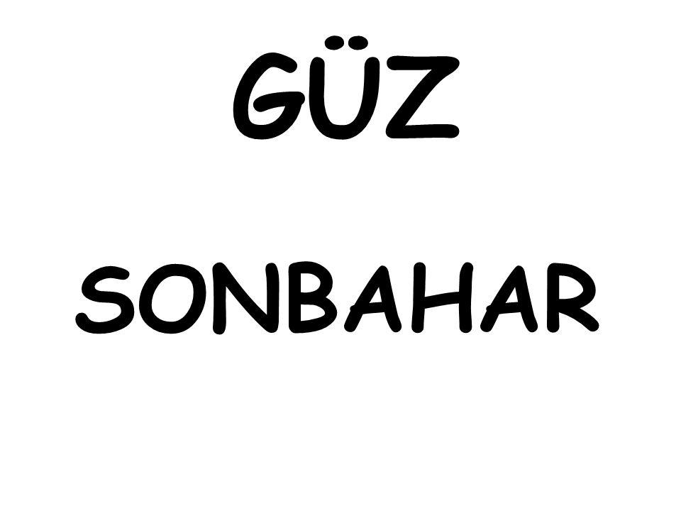 GÜZ SONBAHAR