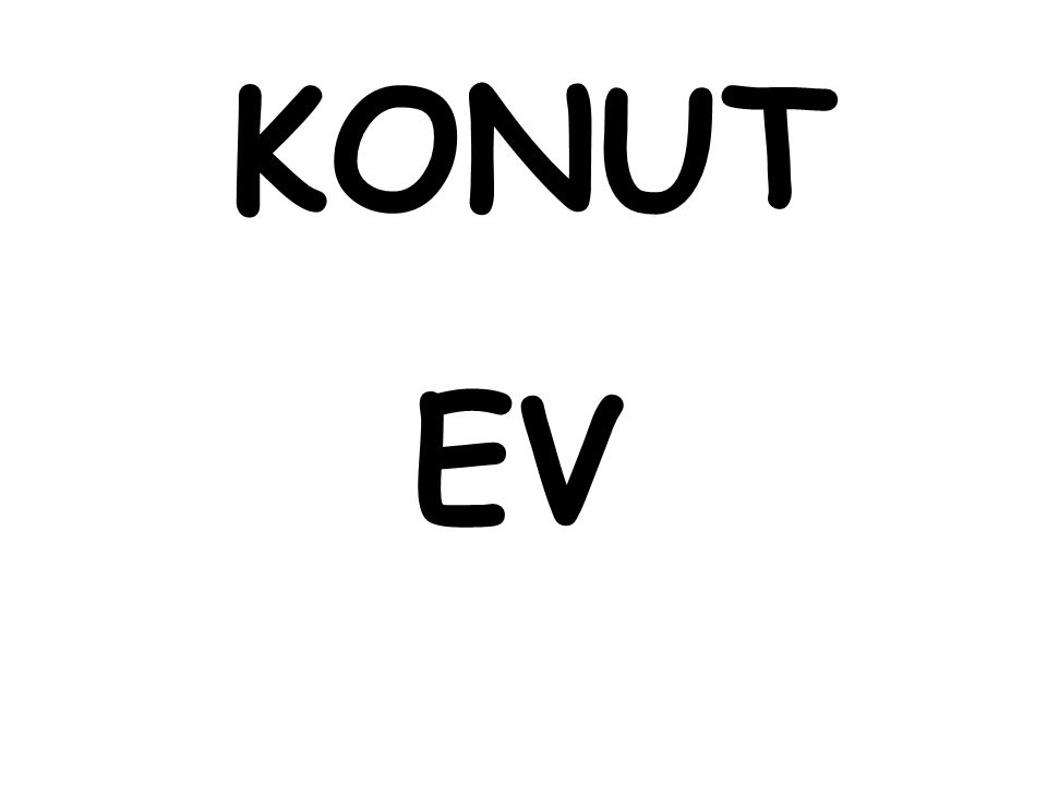 KONUT EV
