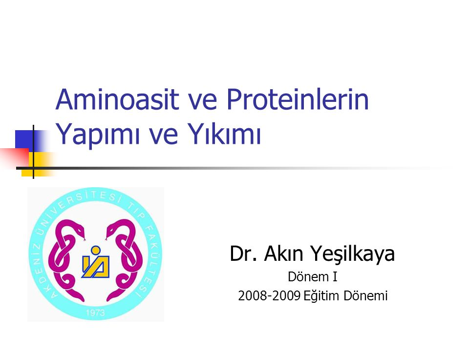 Aminoasit ve Proteinlerin Yapımı ve Yıkımı