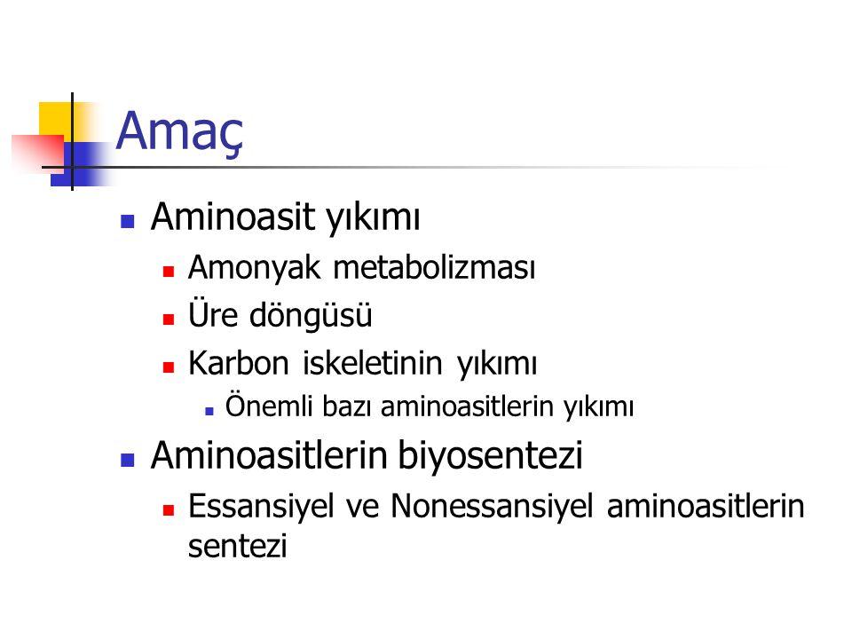 Amaç Aminoasit yıkımı Aminoasitlerin biyosentezi Amonyak metabolizması