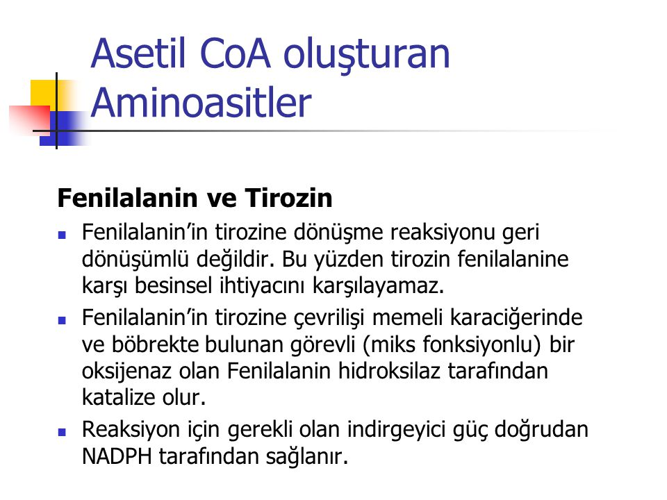 Asetil CoA oluşturan Aminoasitler