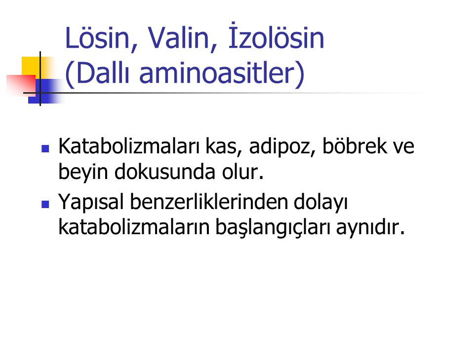 Lösin, Valin, İzolösin (Dallı aminoasitler)