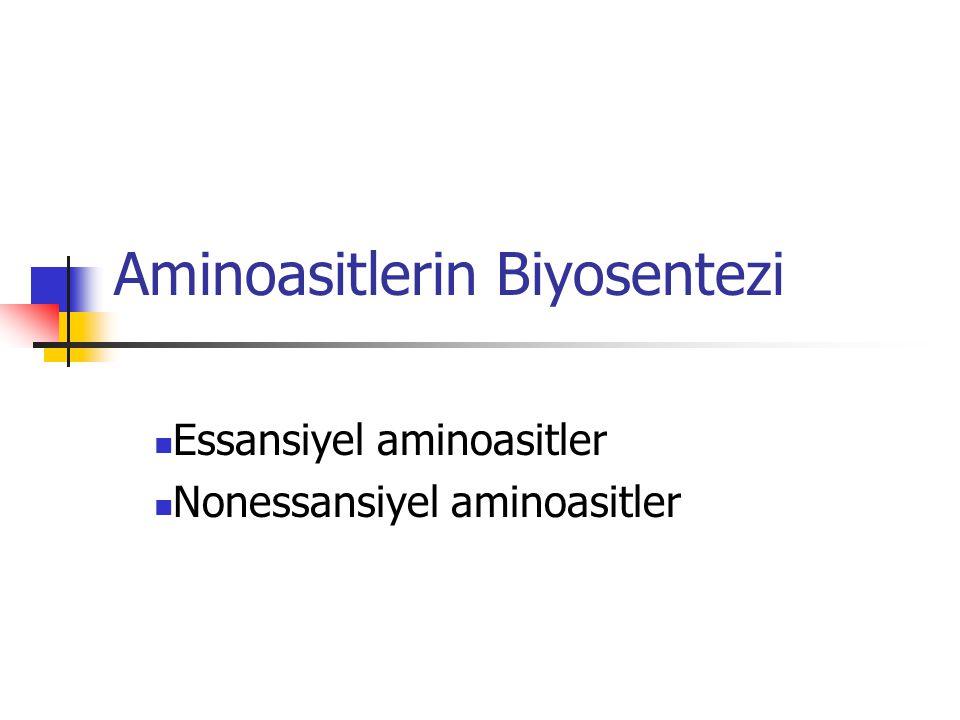 Aminoasitlerin Biyosentezi