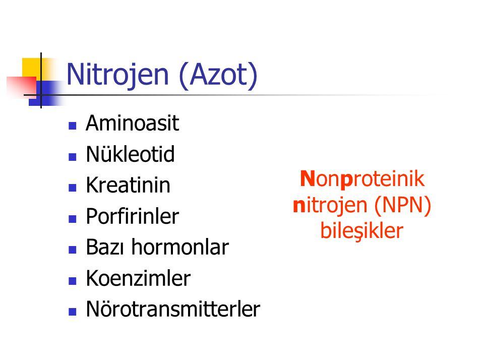 Nonproteinik nitrojen (NPN)