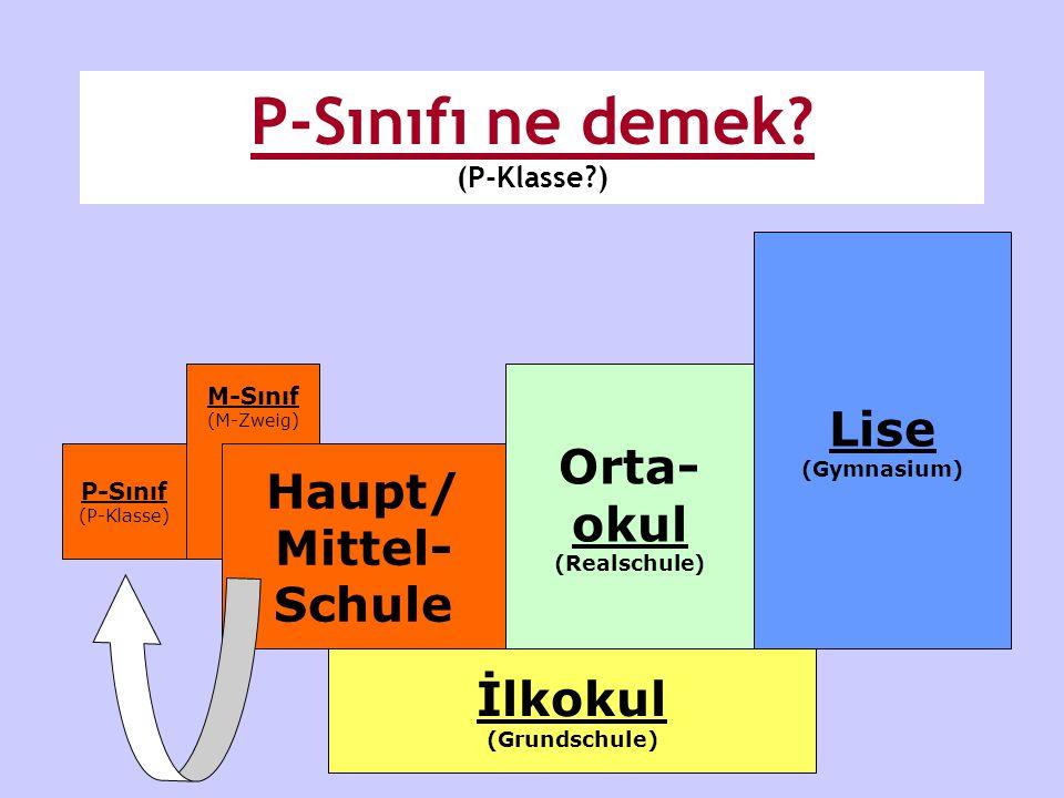 P-Sınıfı ne demek (P-Klasse )
