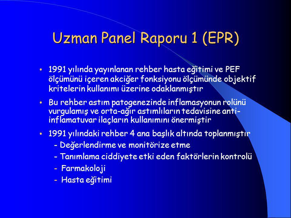 Uzman Panel Raporu 1 (EPR)