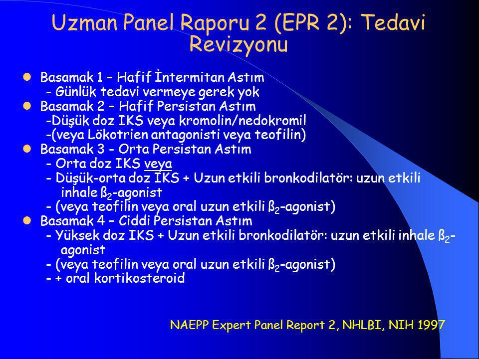 Uzman Panel Raporu 2 (EPR 2): Tedavi Revizyonu