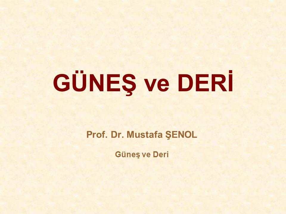 Prof. Dr. Mustafa ŞENOL Güneş ve Deri