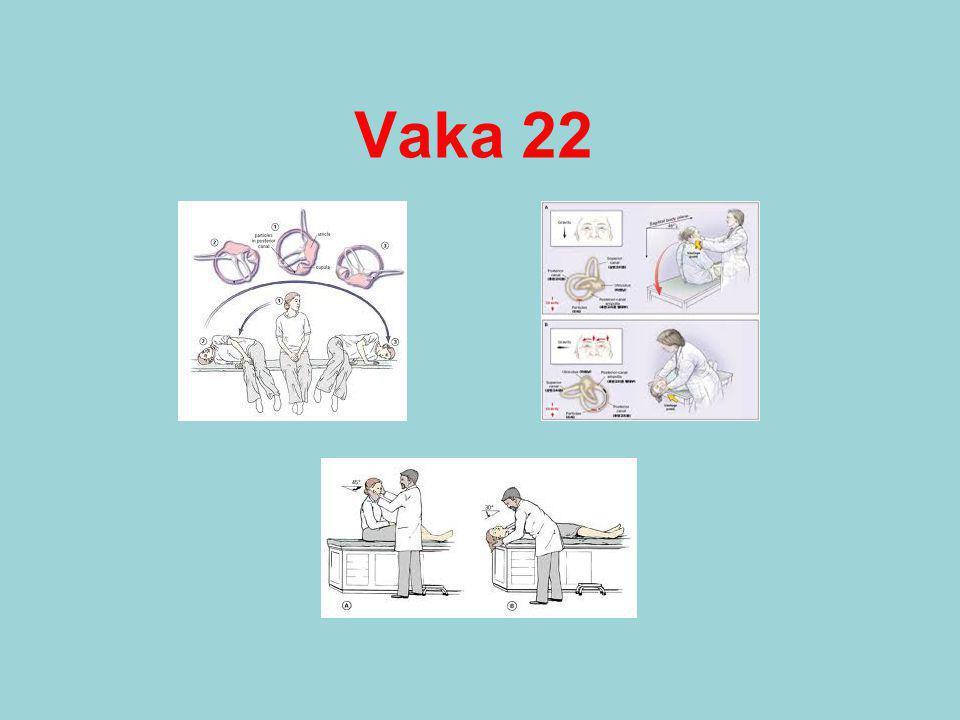 Vaka 22