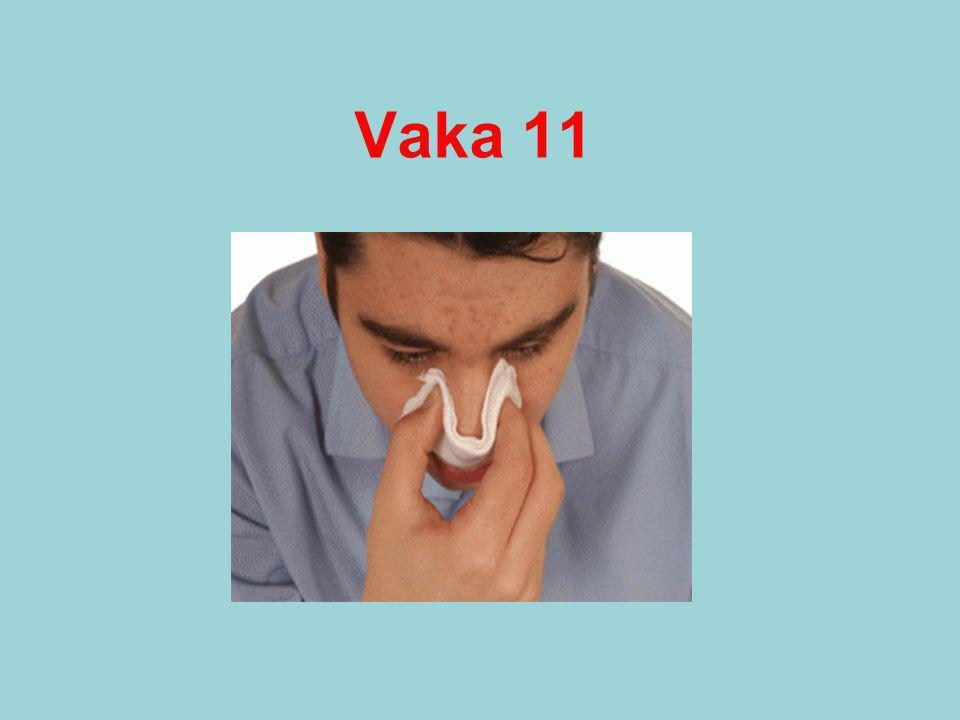 Vaka 11