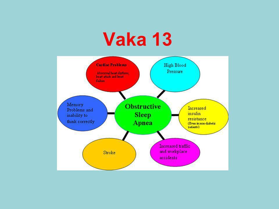 Vaka 13