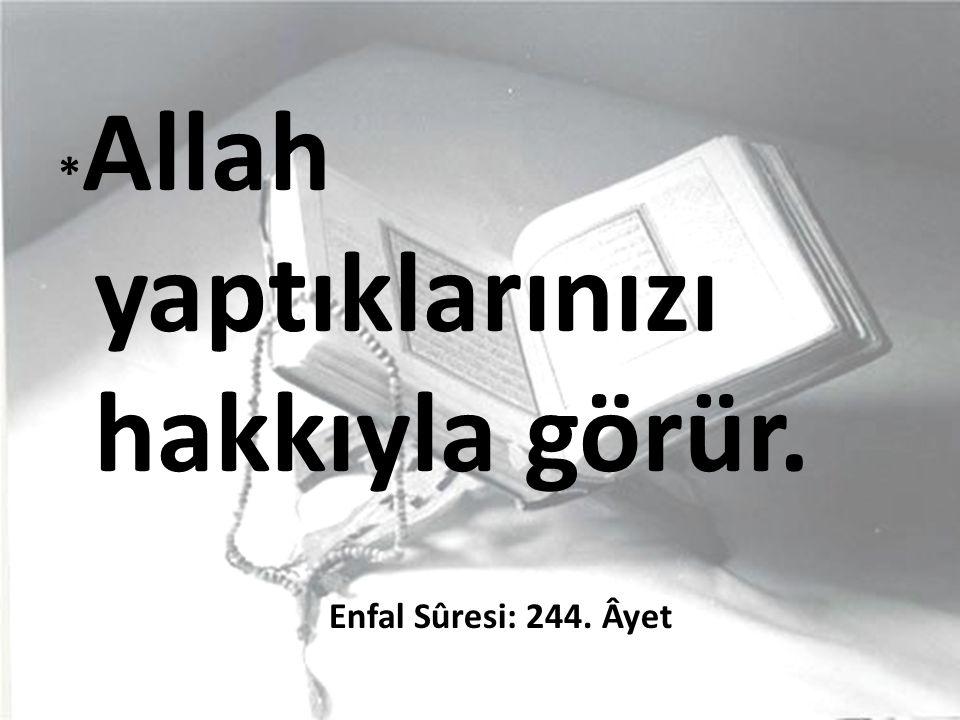 *Allah yaptıklarınızı hakkıyla görür. Enfal Sûresi: 244. Âyet