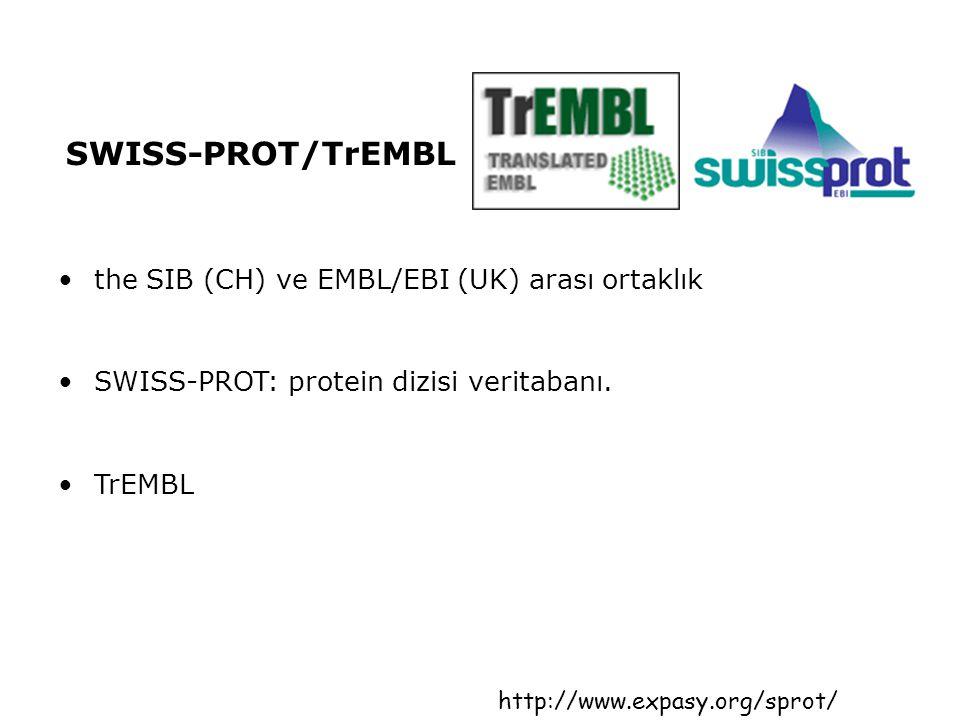 SWISS-PROT/TrEMBL the SIB (CH) ve EMBL/EBI (UK) arası ortaklık