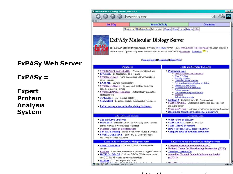 ExPASy Web Server ExPASy = Expert Protein Analysis System http://www.expasy.org/