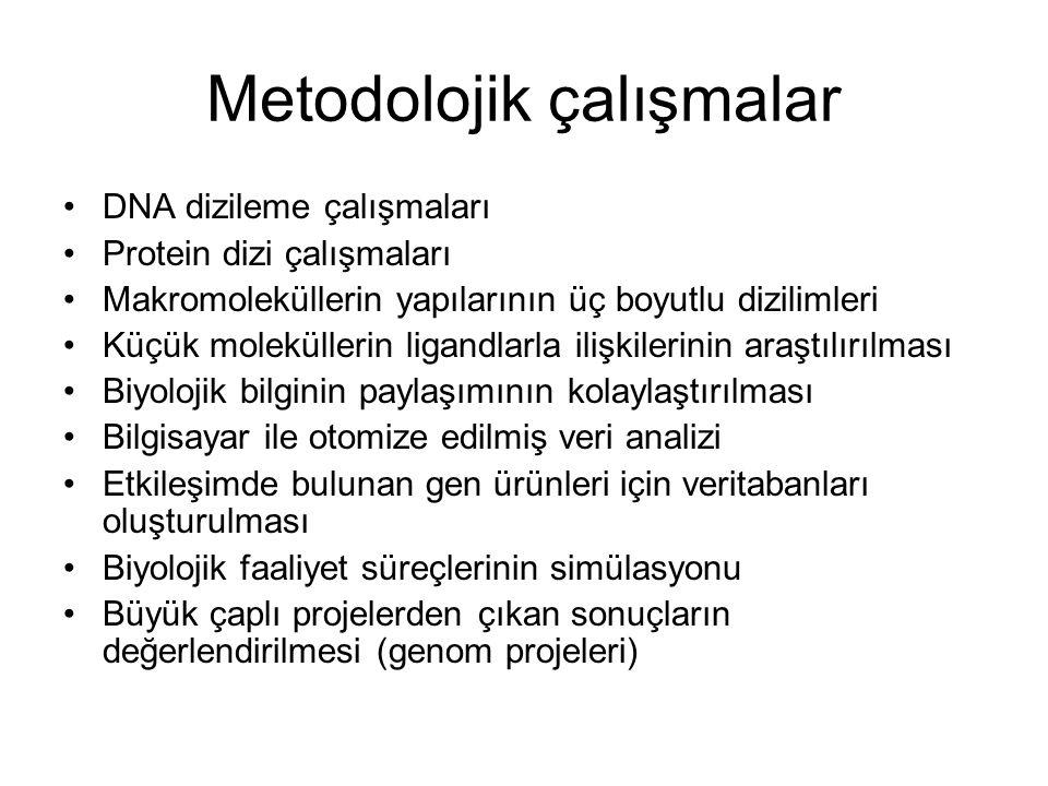 Metodolojik çalışmalar