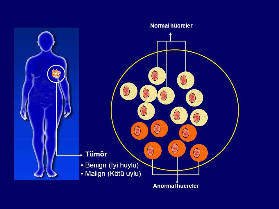 Tümör Benign (İyi huylu) Malign (Kötü uylu) Normal hücreler