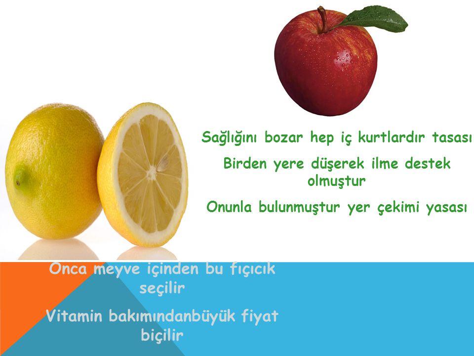 Onca meyve içinden bu fıçıcık seçilir