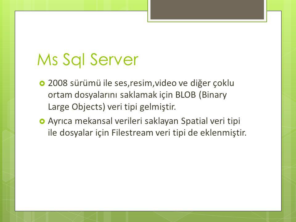 Ms Sql Server 2008 sürümü ile ses,resim,video ve diğer çoklu ortam dosyalarını saklamak için BLOB (Binary Large Objects) veri tipi gelmiştir.